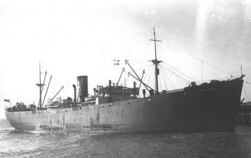 RFA Torr Head